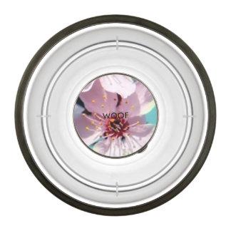 test pet bowl