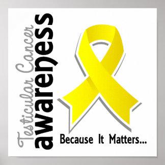 Testicular Cancer Awareness 5 Poster