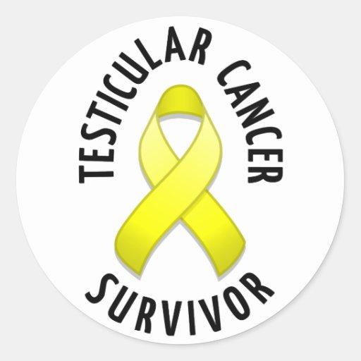Testicular Cancer Survivor Round Sticker