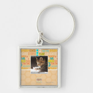 Testing owt sunbaff Silver-Colored square key ring