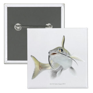Tete sea catfish (Hexanematichthys seemanni) 2 15 Cm Square Badge
