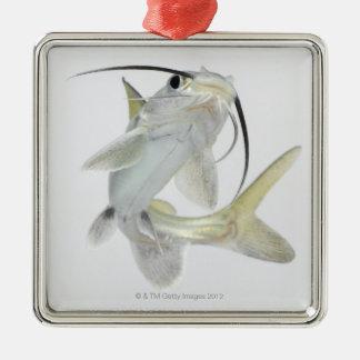 Tete sea catfish (Hexanematichthys seemanni) Christmas Ornament