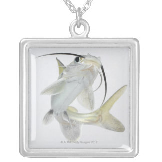Tete sea catfish (Hexanematichthys seemanni) Silver Plated Necklace