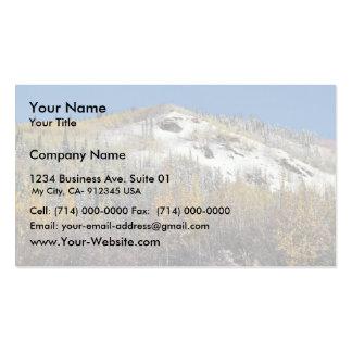 Tetlin National Wildlife Refuge Business Cards