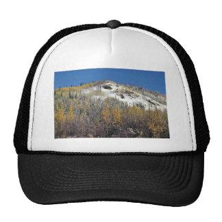 Tetlin National Wildlife Refuge Mesh Hats