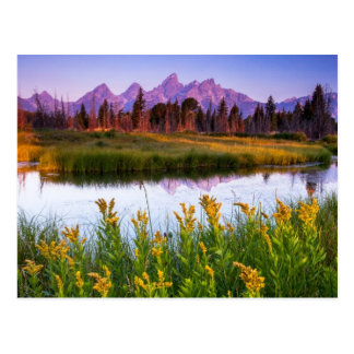Teton Sunrise Postcard