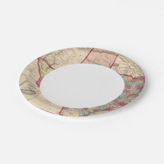 Texas 10 7 inch paper plate