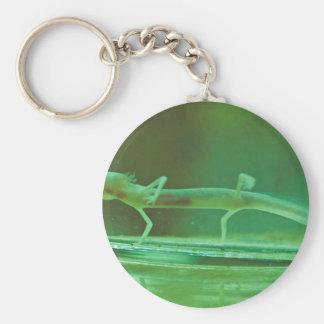 Texas Blind Salamander Key Chain