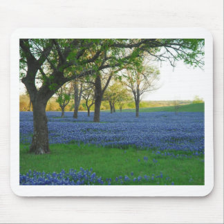 Texas Blue Bonnets Mouse Mat
