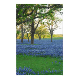 Texas Blue Bonnets Stationery Paper