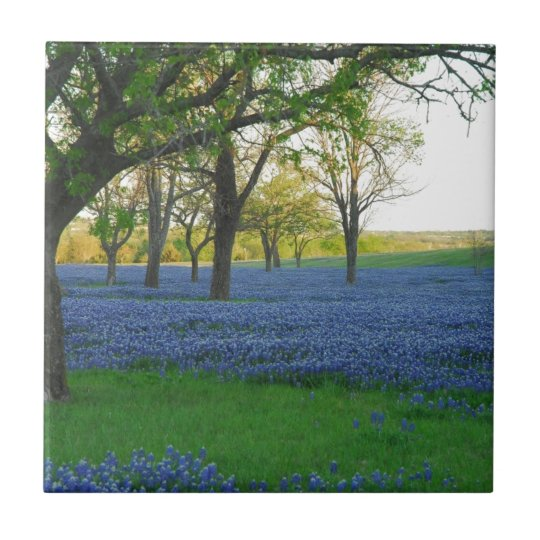 Texas Blue Bonnets Tile