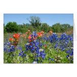 Texas Bluebonnet & Paintbrush Notecard Greeting Cards
