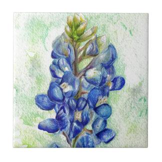 Texas Bluebonnet Wildflower Drawing Tile