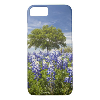 Texas bluebonnets(lupinus texensis) and oak iPhone 8/7 case