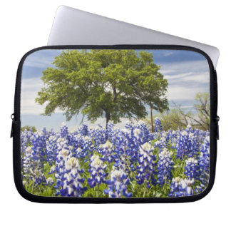 Texas bluebonnets(lupinus texensis) and oak laptop sleeve