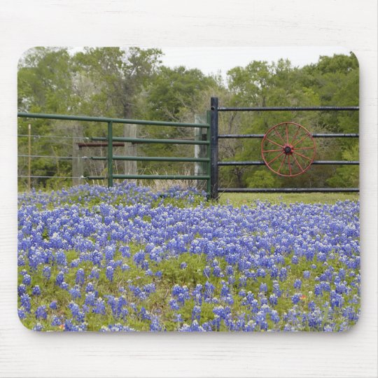 Texas Bluebonnets Mouse Mat