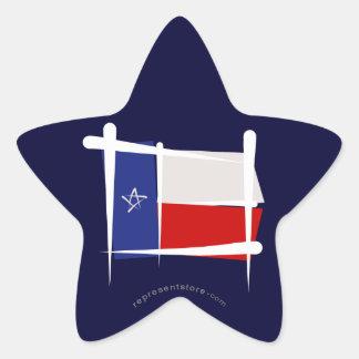 Texas Brush Flag Star Sticker