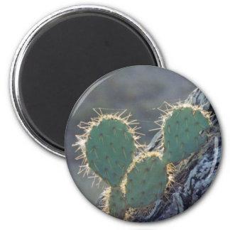 Texas Cactus Magnet