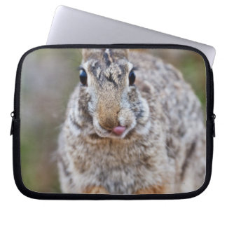 Texas cottontail rabbit laptop sleeve