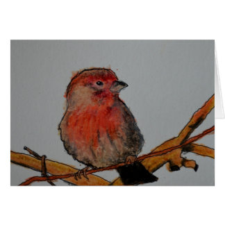 Texas Finch Blank Card