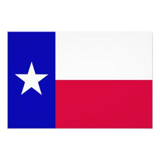 Texas Flag Art Photo