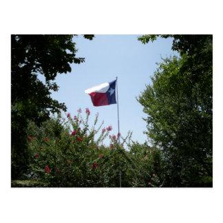 Texas Flag Postcard