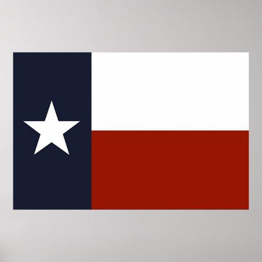 Texas Flag Print