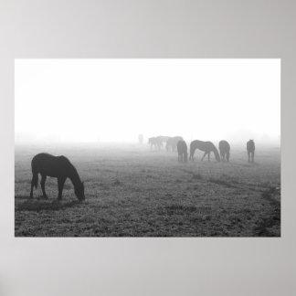 Texas Fog Poster