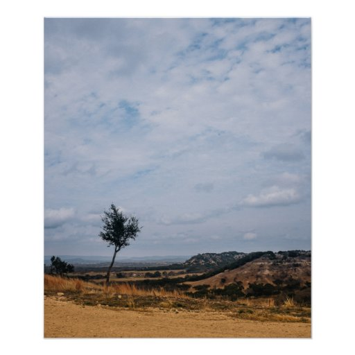 Texas Hill Country Landscape Poster