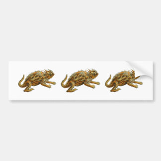 Texas Horned Lizard Bumper Sticker