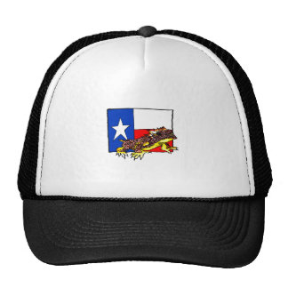 TEXAS HORNED TOAD HAT