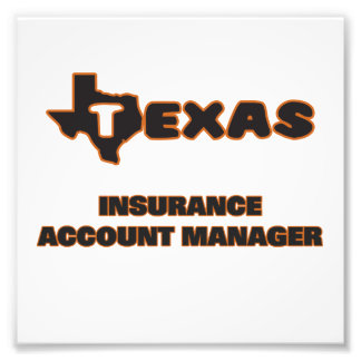 Texas Insurance Account Manager Art Photo