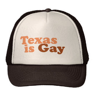 Texas is gay hat