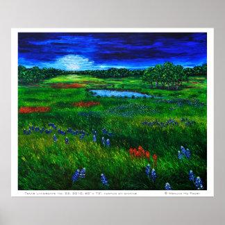Texas Landscape Poster Poster