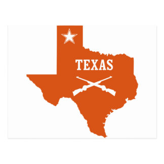 Texas Lone Star Crossed Guns U.S. Custom Ink Postcard