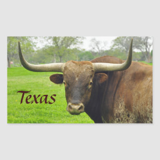 "Texas Longhorn ""Texas"" Sticker"