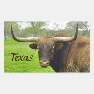 "Texas Longhorn ""Texas"" Sticker"
