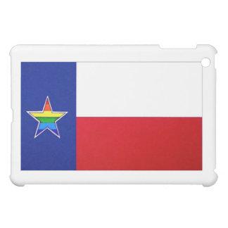 Texas Pride iPad case