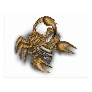 Texas Scorpion Postcard