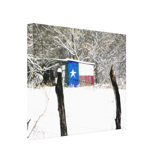 Texas Snow Canvas Print