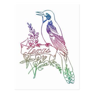 Texas State Bird - The Mockingbird Postcard