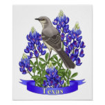 Texas State Mockingbird & Bluebonnet Flower Poster