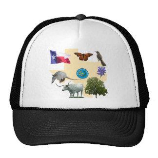 Texas State Symbols Cap