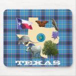 Texas State Symbols Mousepad