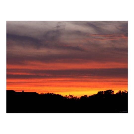 Texas Sunset Postcard