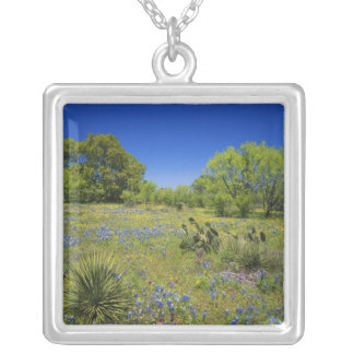 Texas, Texas Hill Country, Low bladderpod, Silver Plated Necklace