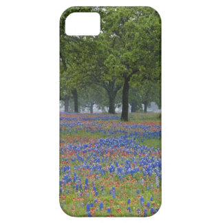 Texas, Texas Hill Country, Texas Paintbrush and iPhone 5 Case