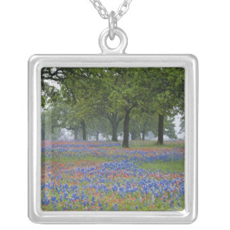 Texas, Texas Hill Country, Texas Paintbrush and Silver Plated Necklace