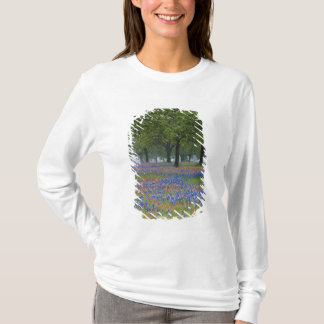 Texas, Texas Hill Country, Texas Paintbrush and T-Shirt