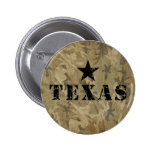 Texas, the Lone Star State Pin